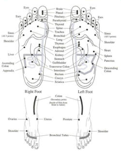 Reflexology for the Feet